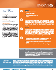 Keel Point Investment Advisory Case Study - Details 2
